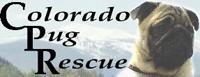 Colorado Pug Rescue